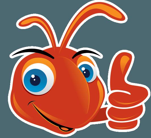 Ant Farm Media